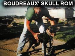 Pedigree Database: BOUDREAUX' SKULL